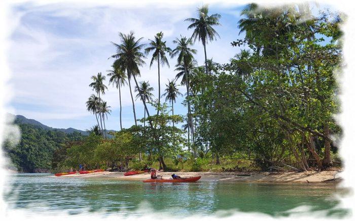 Picturesque Coconut Beach of Koh Man Nai Island